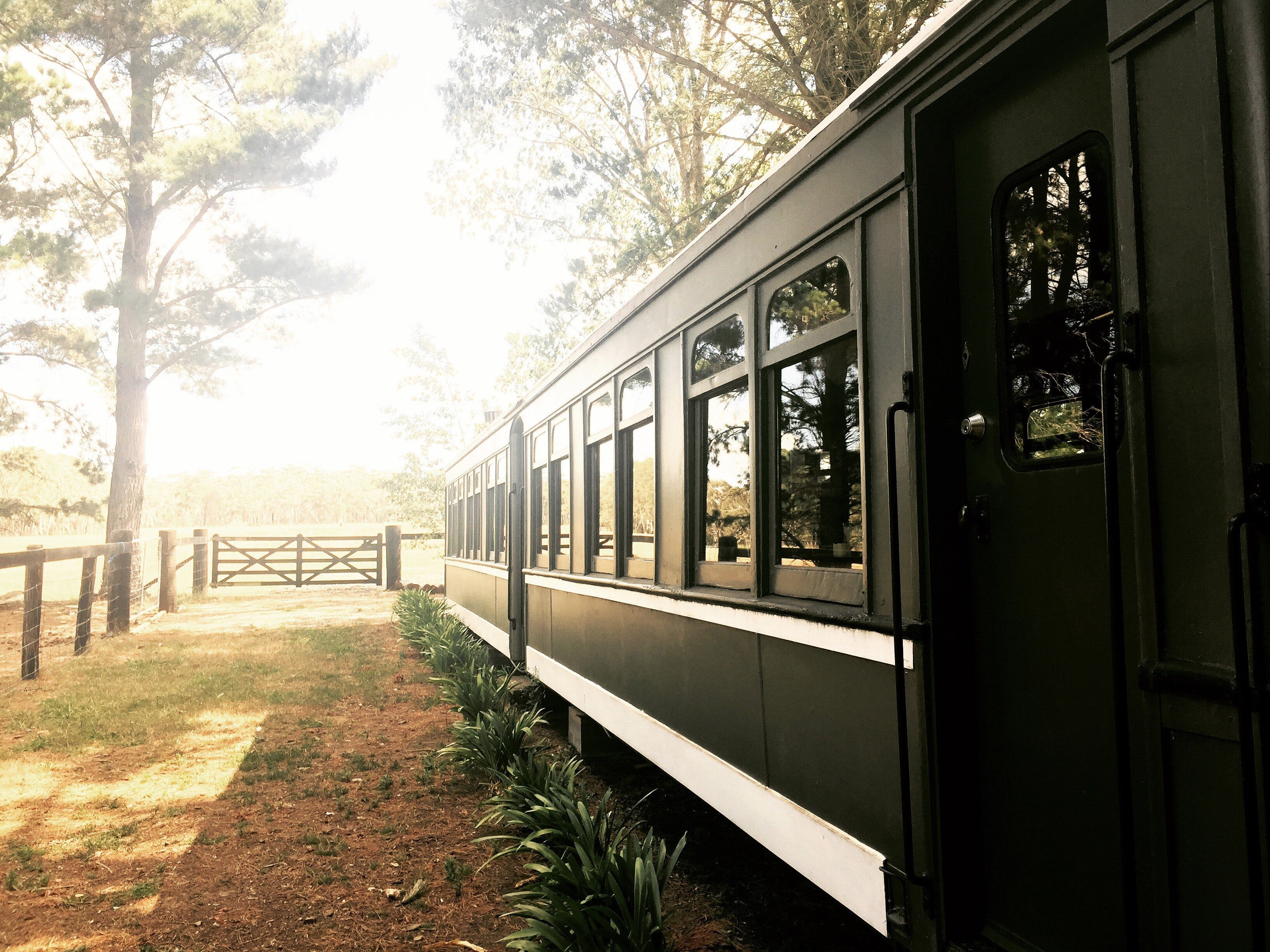 Redleaf Farm Carriages - Accommodation Sunshine Coast