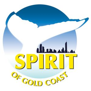 Spirit of Gold Coast Whale Watching - Accommodation Sunshine Coast