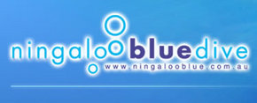 Ningaloo Blue Dive - Accommodation Sunshine Coast